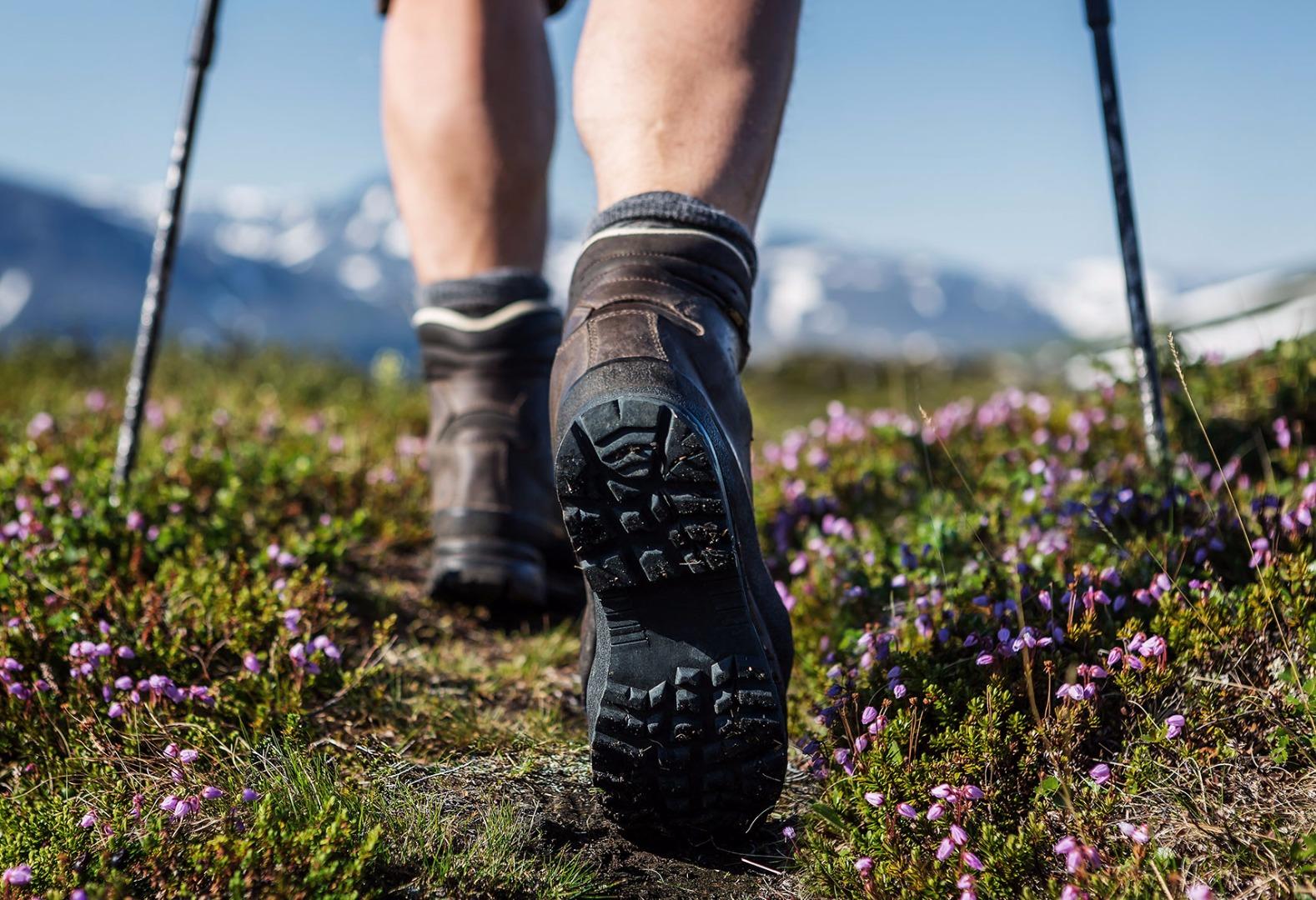 Bild zum Wellness-Angebot Sommerauszeit in den Bergen