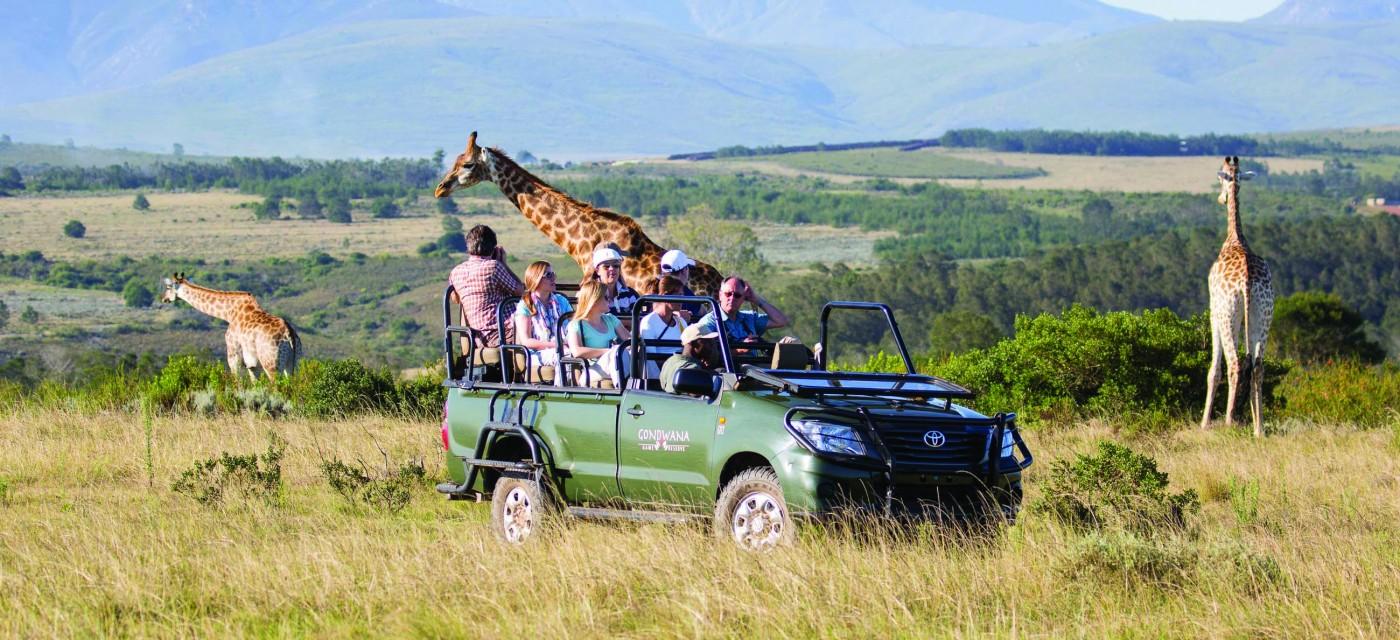 Sukha-Massage: Foto vom Wellnesshotel Gondwana Game Reserve | Wellness Westkap