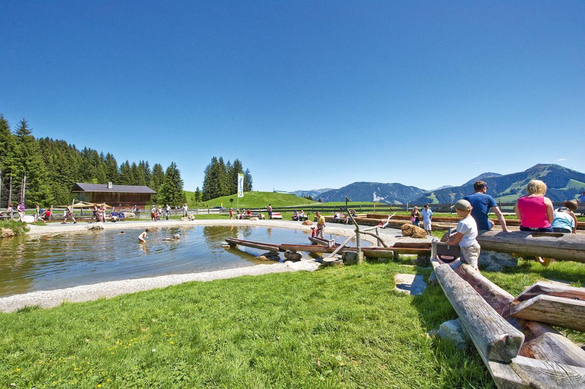 Fangokur: Foto vom Wellnesshotel Hotel Elisabeth | Wellness Tirol