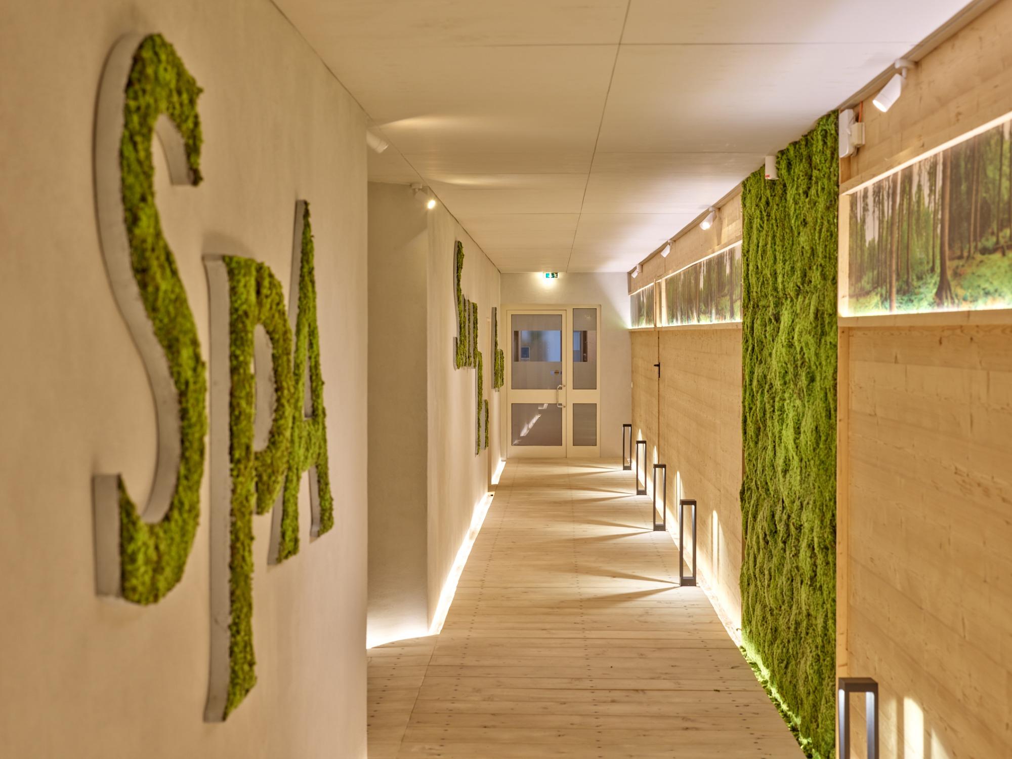 Ginseng: Foto vom Wellnesshotel Parkhotel Bad Griesbach   Wellness Bayern