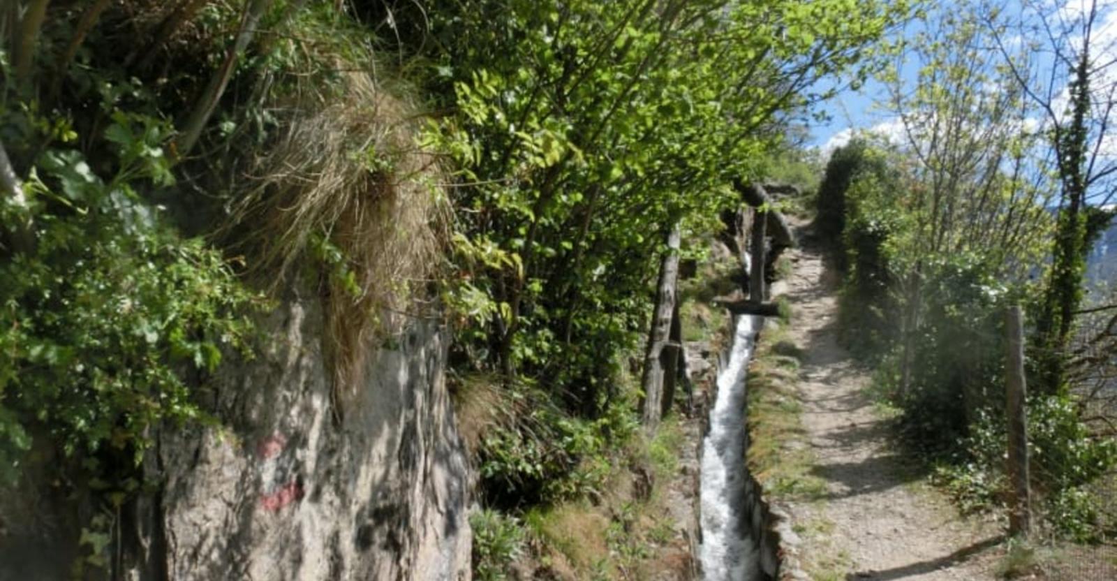 Bild zum Wellness-Angebot Waalwege - Genusswandern auf den Urwegen Südtirols