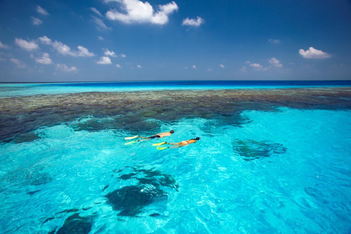 Gili Lankanfushi Bilder | Bild 1